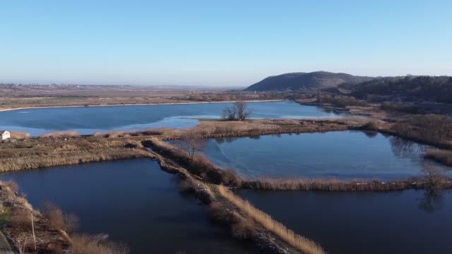 Forest lake aerial top view blue sky video