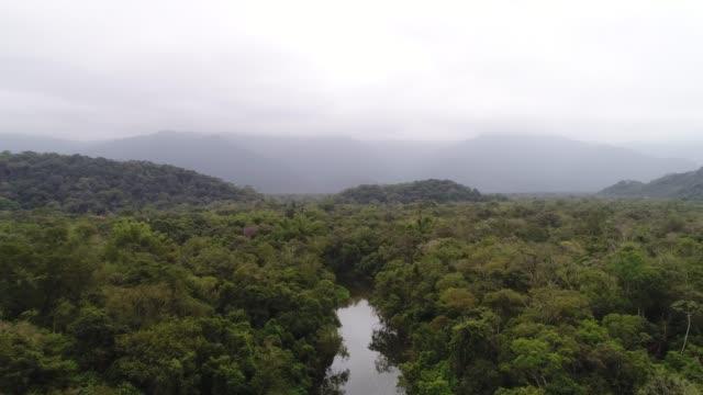 Paisaje de bosque y montañas en un día nublado en Brasil - vídeo