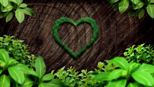 forest love - recycling heart bildbanksvideor och videomaterial från bakom kulisserna
