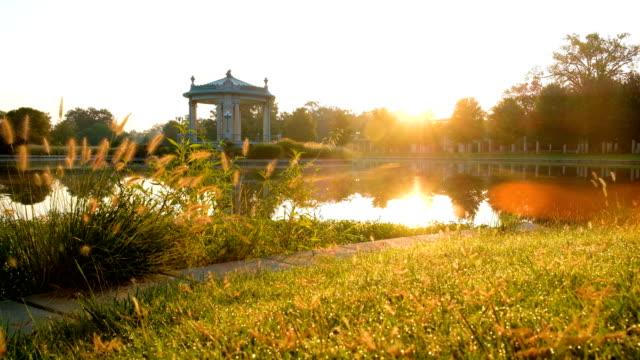 세인트 루이스, 미주리에서 삼림 공원 연주 - st louis 스톡 비디오 및 b-롤 화면