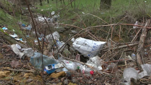 Forest pollution, plastic garbage in the pinewood. Dump plastic debris in pine tree forest. Dump garbage in woods of Ukraine. Environmental plastic pollution is ecological problem.