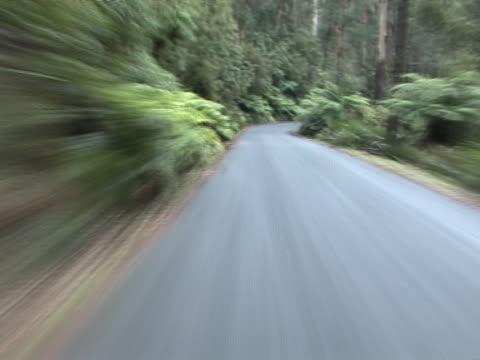 stockvideo's en b-roll-footage met forest  road - natuurgrond