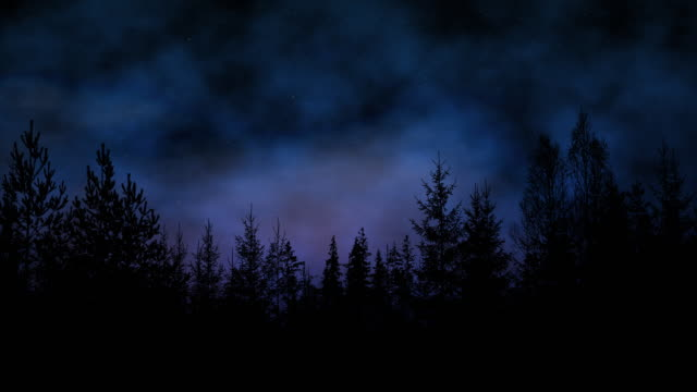 Forest silhouette on a beautiful bright starry night with mist rolling by Forest silhouette on a beautiful bright starry night with mist rolling by. trees in mist stock videos & royalty-free footage