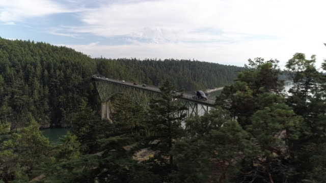 Forest Trees Drone Reveal of Cars in Commute on High Ocean Bridge in Pacific Northwest video