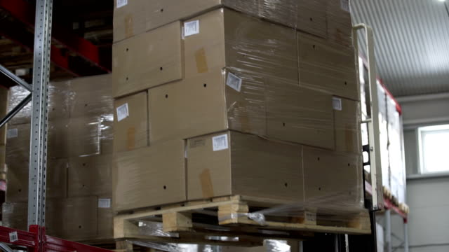 Forklift Trucks unload Pallets with Cardboard Boxes at modern warehouse video