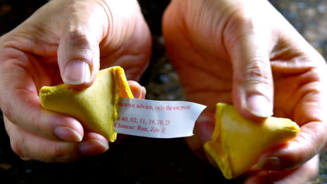 Fortune Cookie video