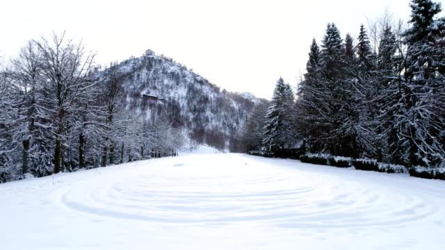 stockvideo's en b-roll-footage met antenne toekomen over alpine berg sneeuw bedekte veld in de buurt van bos dennenbossen in bewolkte winter. europa alpen buiten aard-scape besneeuwde bergen wilde establisher.4k drone vlucht schot tot oprichting van - sneeuwkap
