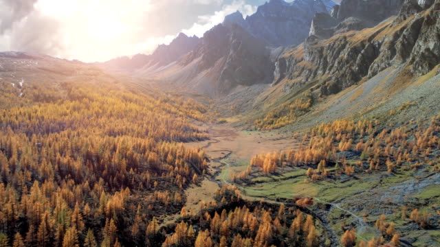 forward aerial over alpine mountain valley and orange larch forest woods in sunny autumn.Alps outdoor mountains wild fall nature at sunset or sunrise establisher.4k drone flight establishing shot video