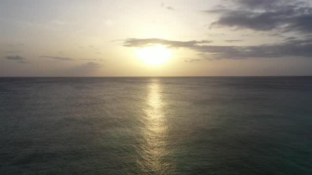 Forward moving drone shot through the palm trees and into a Caribbean sunset video