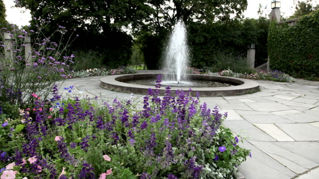 Fountain and roses in a park. video