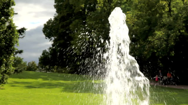 Fountain  in a park and green lawn.. video