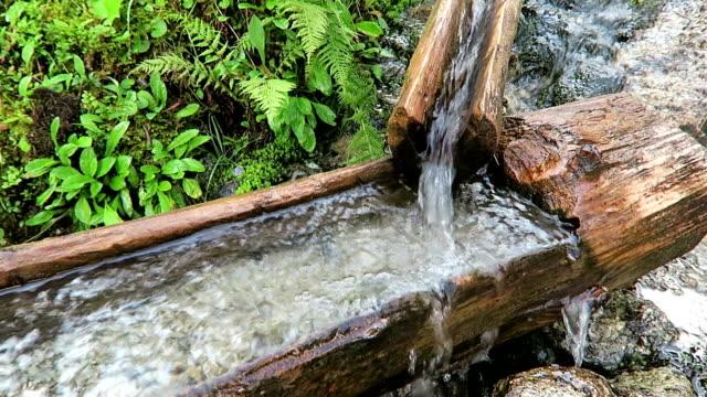 fontän av en trädstam i europeiska alperna. vatten som rinner. - delstaten tyrolen bildbanksvideor och videomaterial från bakom kulisserna