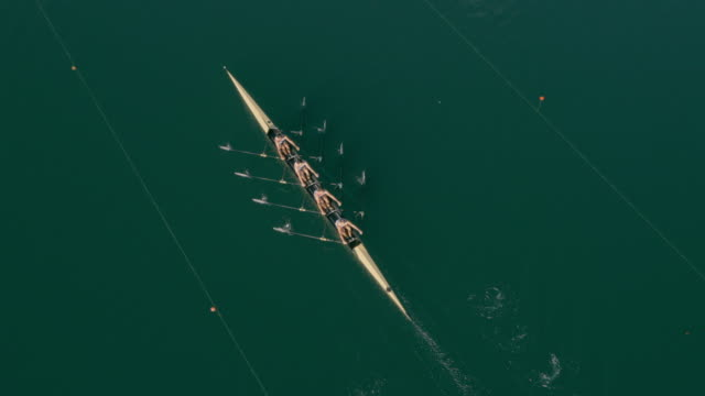vídeos de stock e filmes b-roll de aerial four athletes rowing in a quad scull across a lake - together