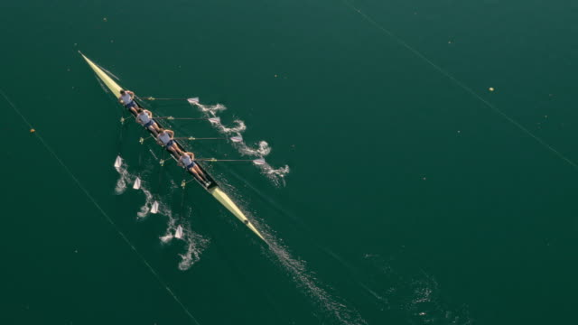 AERIAL Four athletes sculling on a lake in sunshine video