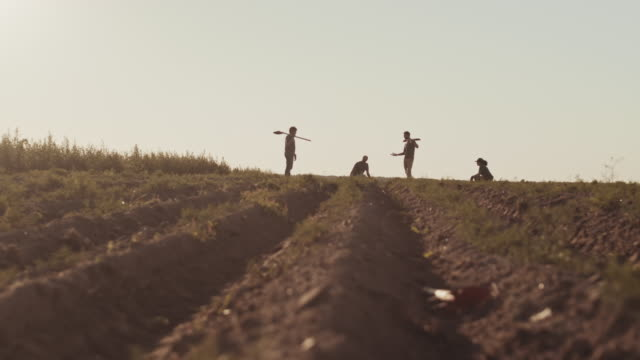four farmer digging potatoes in field - four seasons filmów i materiałów b-roll