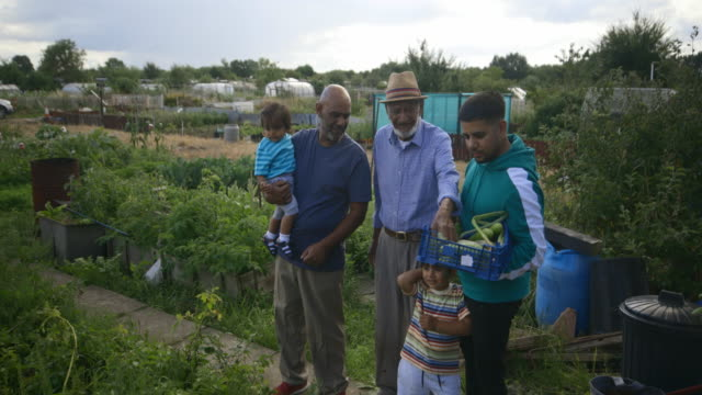 Four Generation Family Watering The Allotment Four generations of family at the allotment watering the fresh produce. homegrown produce stock videos & royalty-free footage