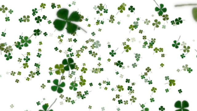 stockvideo's en b-roll-footage met four leaf clover background - klavertje vier