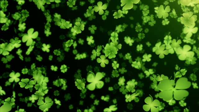 stockvideo's en b-roll-footage met four leaf clover/shamrock (black) - loop - klavertje vier