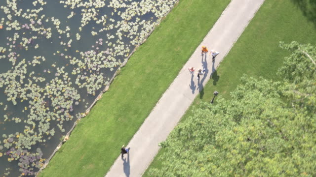 vídeos de stock e filmes b-roll de aérea de quatro corredores correr ao longo de um lago no parque - parque público