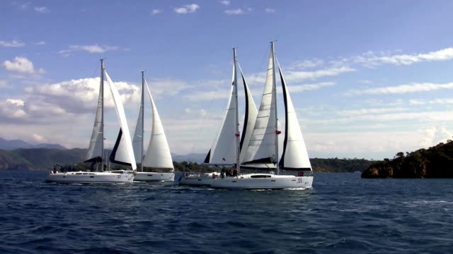 Four sailing yachts run synchronously video