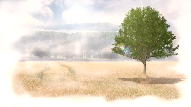 Four Seasons video