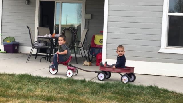 stockvideo's en b-roll-footage met een vier jaar oude kaukasische jongen trekt zijn broer in een wagen met een driewieler in een residentiële achtertuin - garden house