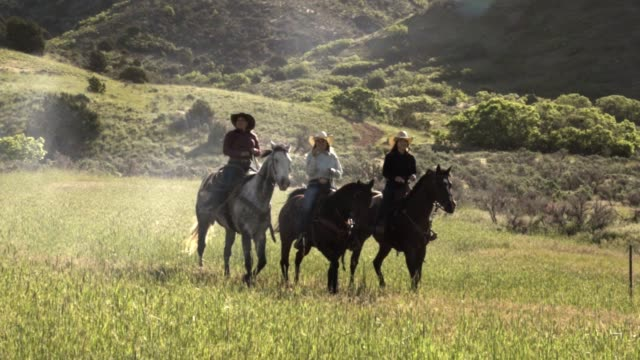 Four Young Cowgirls Riding Horseback in an Alpine Field Pretty young and healthy cowgirls riding their horses together. cowgirl stock videos & royalty-free footage