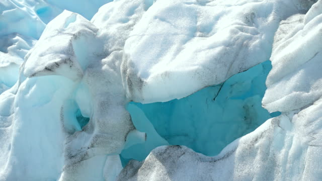 Fox glaciers gap, Southern island, New Zealand video