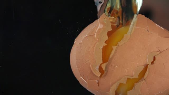 vídeos de stock, filmes e b-roll de frágil ovo quebrando em câmera lenta. - alimento cru
