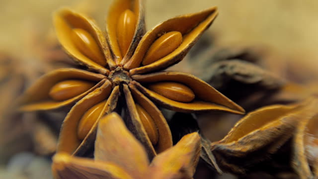 Fragrant, aromatic, natural and good for health anise star-shaped lie on a table video