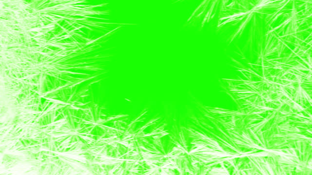frame of christmas real crystal snowflakes snow like background on chroma key green screen, winter holiday xmas - snowflake background stock videos & royalty-free footage