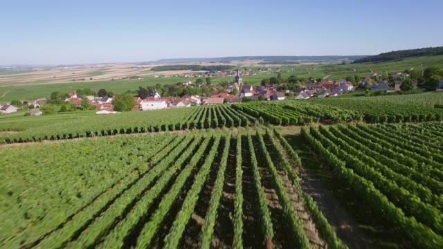 France, Champagne, regional park of Montagne de Reims, view of Ville Dommange video