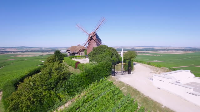 France, Champagne, regional park of Montagne de Reims, windmill of Verzenay video