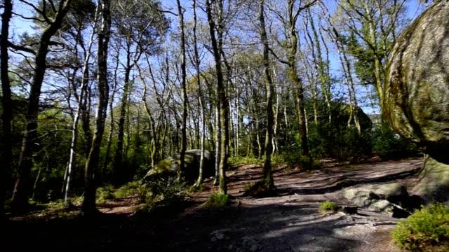 vidéos et rushes de france, finistère (29), parc naturel régional d'armorique, huelgoat, chaos granitique de la forêt de huelgoat, site du champignon du rocher - bretagne