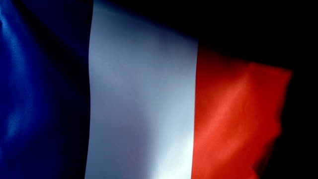 france flag flapping - cultura francese video stock e b–roll