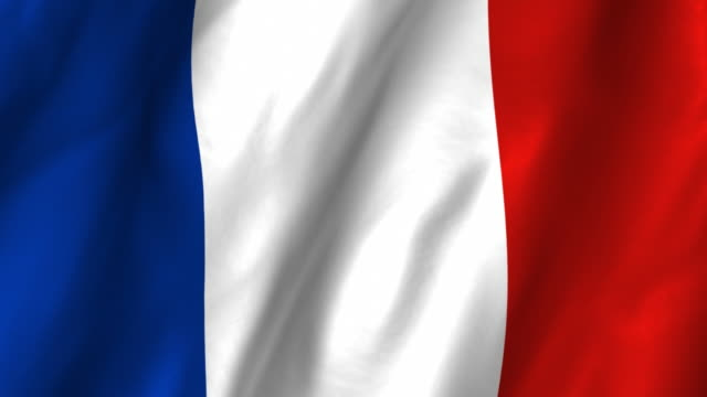 France Flag - waving, looping video