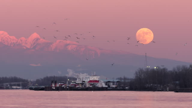 Fraser River Moonrise, Vancouver The moon rising over the Coast Mountains. British Columbia, Canada. vancouver canada stock videos & royalty-free footage