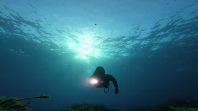 Free diver spearfishing in blue sea: looking for something underwater with a flashlight