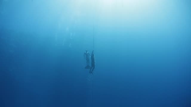 free divers ascend along the rope in a sea - дайвинг стоковые видео и кадры b-roll