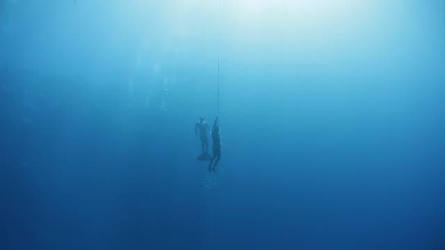 vidéos et rushes de des plongeurs libres montent le long de la corde dans une mer - plongée sous marine