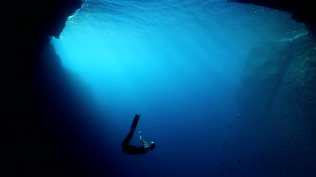 freediver diving in the blue water - tuffarsi video stock e b–roll