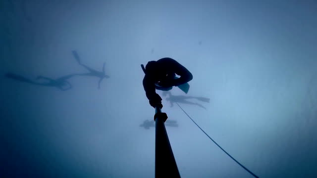 Freediver going at 20m or 60 feet and experiencing a Freefall. video