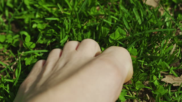 Freedom foot touching the grass gentle Central Park New York video