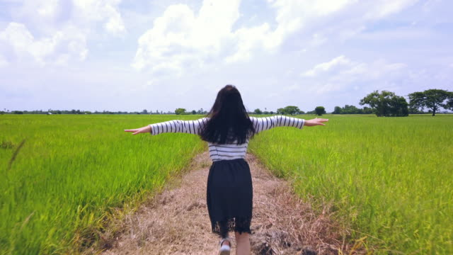 freedom in the rice field video