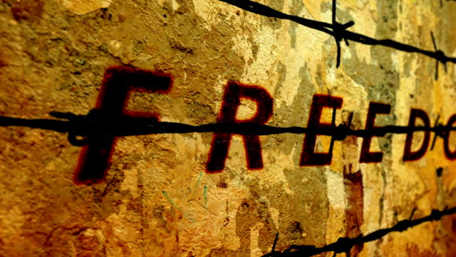 freedom text against barbwire - censura video stock e b–roll
