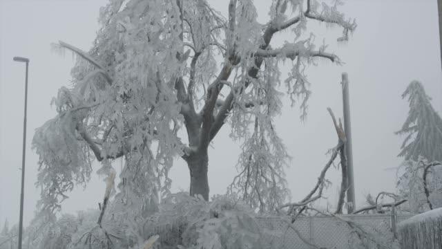 vidéos et rushes de pluie glacée en europe - emballé