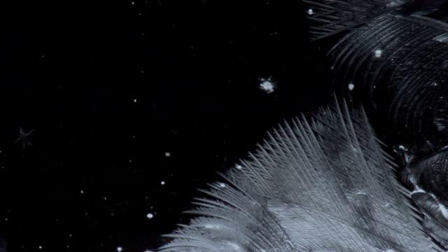 freezing winter glass video
