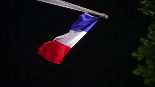 French Flag blowing in the wind next to a tree during the evening video