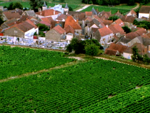 French village and vineyards from above video