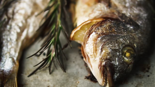 Fresh baked fish with rosemary and lemon on baking paper, dolly shot. Healthy food concept.